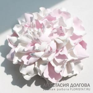 "Студия лепки""Флориста"", Новокузнецк."