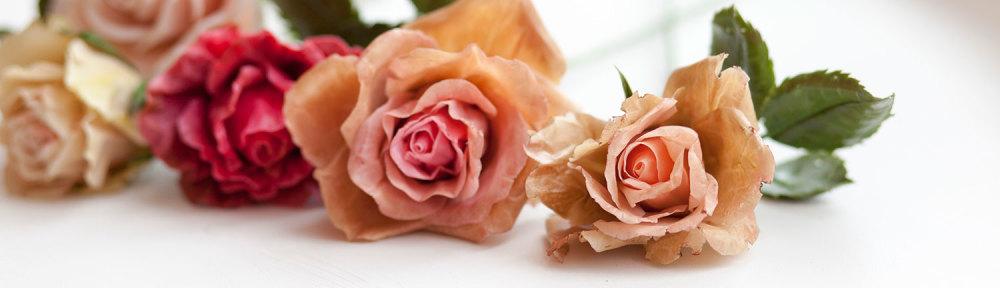 Засушенная розы из холодного фарфора.